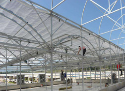 High tunnel greenhouse 3
