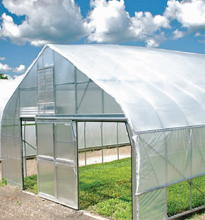 Freestanding Tunnel Greenhouse