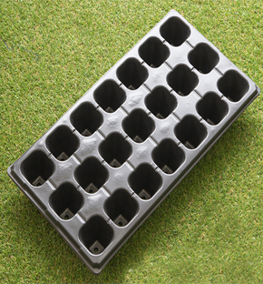 21 hole as cell plug tray