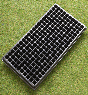 200 hole as cell plug tray