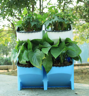 Smart Plant Pot for Vertical Green Wall
