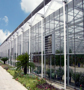 Glass Greenhouse Turnkey Project, Sichuang