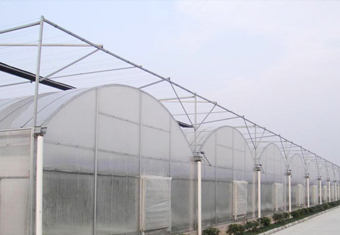 Poly Plastic Greenhouse 1