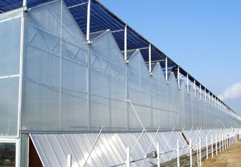 PC (polycarbonate) greenhouse 3