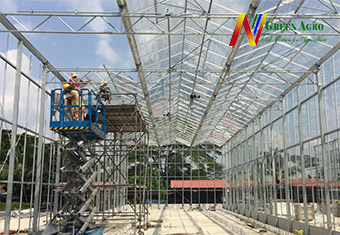 Build Commercial Big Greenhouse & hydroponics